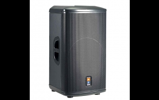Professional Audio Speaker